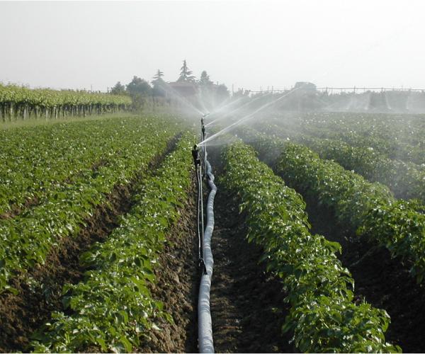 Фиксирани дъждовални системи
